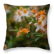 Orange Brilliance Throw Pillow