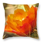 Orange Cactus Flower Throw Pillow