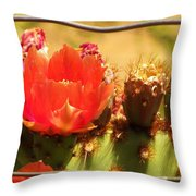 Orange Cactus Flower With Fence Throw Pillow