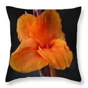 Orange Canna Lily Throw Pillow