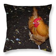 Orange Chicken Throw Pillow