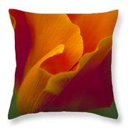 Orange Corolla Throw Pillow