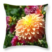 Orange Dahlia Flower Floral Fine Art Photography Throw Pillow by Baslee Troutman