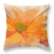 Orange Daisy Throw Pillow