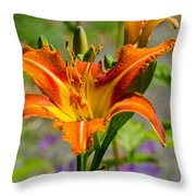 Orange Day Lily Throw Pillow