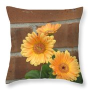 Orange Delight Throw Pillow