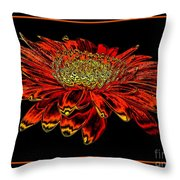 Orange Gerbera Daisy With Chrome Effect Throw Pillow