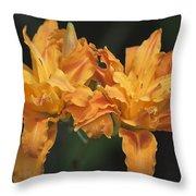 Orange Kwanso Daylily Pair Throw Pillow