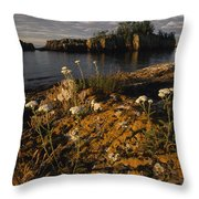 Orange Lichen-covered Rocks At Isle Throw Pillow