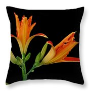 Orange Lily On Black Throw Pillow