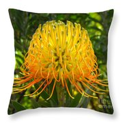 Orange Protea Flower Art Throw Pillow by Rebecca Margraf