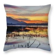 Orange Reflections Throw Pillow