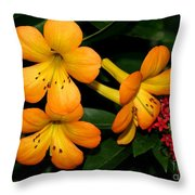 Orange Rhododendron Flowers Throw Pillow