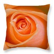 Orange Rose Throw Pillow