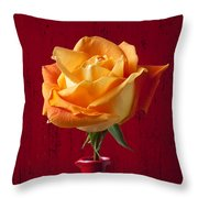 Orange Rose In Red Pitcher Throw Pillow