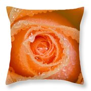Orange Rose With Dew Throw Pillow