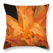 Orange Ruffles Throw Pillow