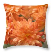Orange Sherbert Throw Pillow