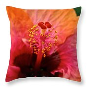 Orange Sherbert Hibiscus Throw Pillow
