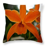 Orange Sherbert  Orchid Throw Pillow