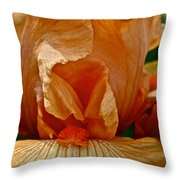 Orange Sherbert Throw Pillow