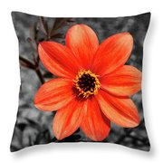 Orange Sunshine Throw Pillow