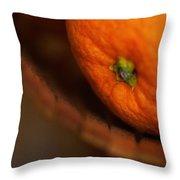 Orange Sunshine Throw Pillow