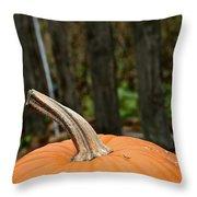 Orange Top Throw Pillow