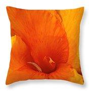 Orange Twist Throw Pillow by Susan Herber