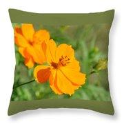 Orange Wildflower Throw Pillow