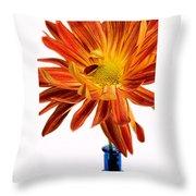 Orange You Happy Throw Pillow