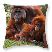 Orangutan Mother And Baby Throw Pillow