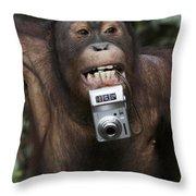 Orangutan With Tourists Camera Throw Pillow