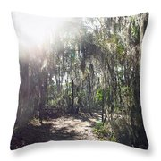 Orb Path Throw Pillow