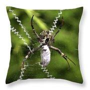Orb Weaver Throw Pillow