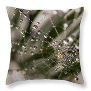 Orbiting The Web Throw Pillow
