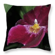 Orchid 252 Throw Pillow