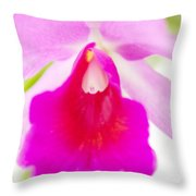 Orchid Abstract #0042 Throw Pillow