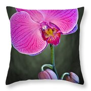 Orchid And Buds Throw Pillow