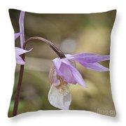 Orchid Calypso Bulbosa - 1 Throw Pillow