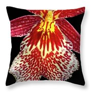 Orchid Hybrid Throw Pillow