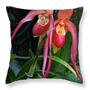 Orchid Mysteries Throw Pillow