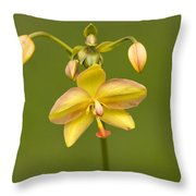 Orchid Number 1 Throw Pillow