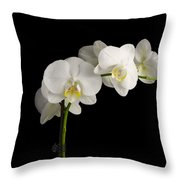 Orchid On Black Throw Pillow