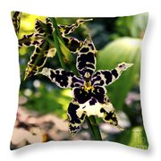 Orchid Study Throw Pillow