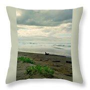 Oregon Coast 17 Throw Pillow