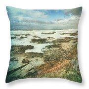 Oregon Coast Morning Throw Pillow