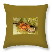 Oregon Combo Throw Pillow
