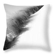 Oregon Dune Throw Pillow
