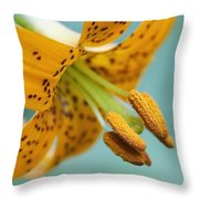 Oregon, United States Of America A Lily Throw Pillow